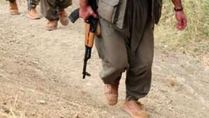 Van'da bir terörist teslim oldu