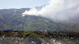 Alanya'da iki ayrı orman yangını