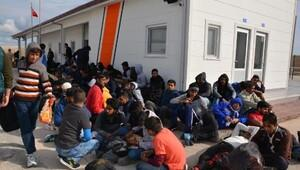Bandırma'da 134 kaçak göçmen yakalandı