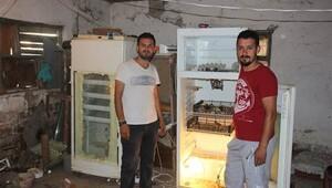 Buzdolabında üretim yapmaya başladılar...