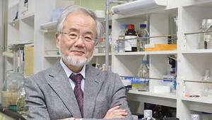 Nobel Tıp Ödülünü Japon Ohsumi kazandı