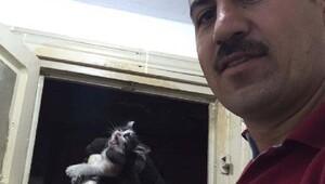 Havalandırma boşluğunda mahsur kalan kediyi kurtarıldı