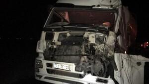 Nusaybinde inek kazaya neden oldu: 1 kişi ağır yaralandı