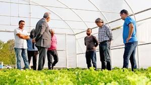 Yalova'da genç çiftçilere 813 bin destek