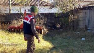 Edirne'de ağaçtan düşerek öldü