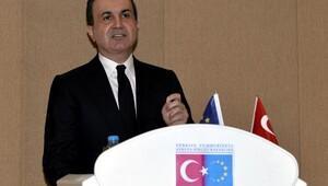 AB Bakanı Ömer Çelik: Bu kararı yok hükmünde sayıyoruz