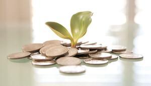 100 milyar dolarlık 'yeşil tahvil' fırsatı