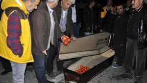Antalyalı çiftçi domatesin cenaze namazını kıldı
