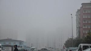 Gaziantepte, yoğun sis etkili oldu
