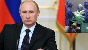 Putin'in Özel Kuvvetlerinde klonlanmış köpekler kullanılacak