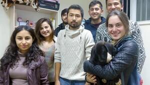 Öğrencilerden hayvan duyarlılığı