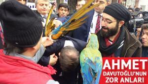 Ahmet Davutoğlunun zor anları