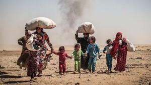 BMden 22 milyar dolarlık rekor insani yardım çağrısı