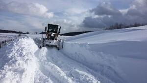 Ordu'da kar kalınlığı 25 santime ulaştı