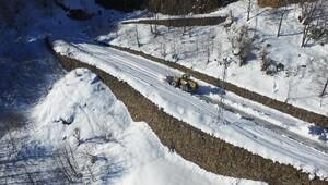 Trabzon'da kar mücadelesi sürüyor