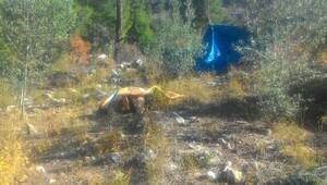 İki gün sonra ormanda ölü bulundu