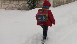 Artvinin iki ilçesinde eğitime kar engeli