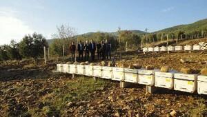 Bakanlık yetkilileri, genç çiftçileri ziyaret etti