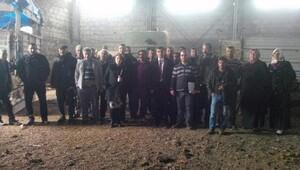 Besni'de genç çiftçilere damızlık büyükbaş hayvan dağıtıldı