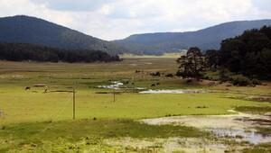 Köroğlu Dağlarının turizm alanı ilan edilmesini bilirkişi uygun bulmadı