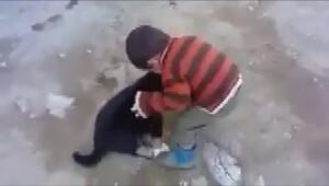Minik çocukla yavru köpeğin gülümseten kavgası