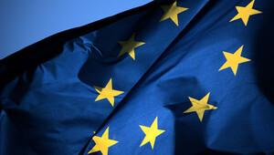 AfD, bazı ülkelerin Euro Bölgesinden çıkmasını istiyor