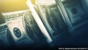 Amerikan Doları 2017'de nasıl bir seyir izleyecek