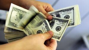 Dövizle borcu olan 27 bin şirket var