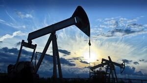 Rusya Maliye Bakanından petrol açıklaması