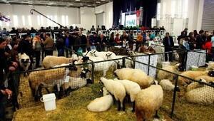Türkiye'nin en büyük tarım fuarı, fuar izmir'de açılıyor