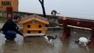 Yalovada kedi evleri dağıtılıyor