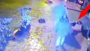 Cihangir'de elektrik kaçağı köpeği öldürdü, sahibini yaraladı