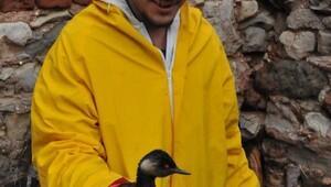 Veteriner Başkan, yakıta bulanan kuşlara müdahale etti (2)