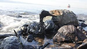 İzmit Körfezini kirleten firmaya 2 milyon TL ceza