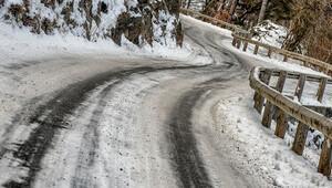 Monte Carlo Rallisinde kaza: 1 seyirci hayatını kaybetti