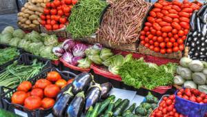 TİGEM yerli sebze tohumu üretimi için hazırlıklarını tamamladı