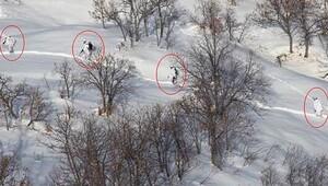 PKKnın kış sığınakları bulundu