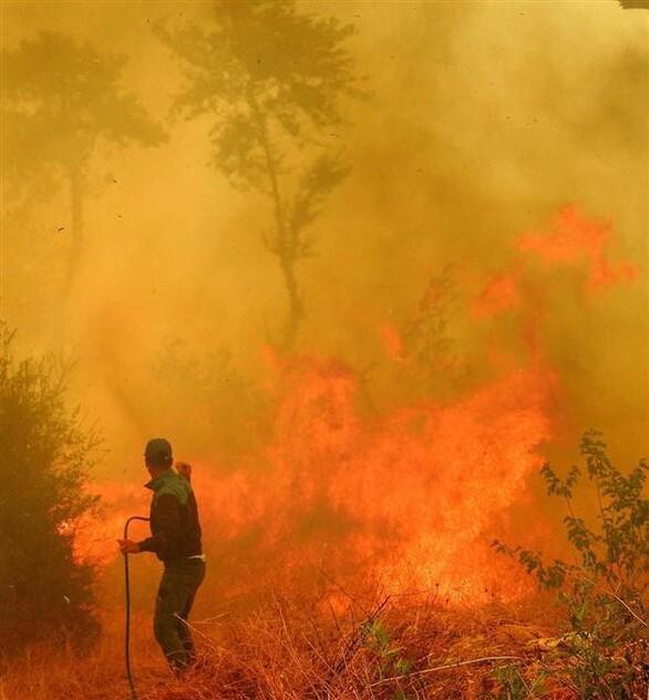 Son dakika haberleri: Antalya'daki yangından sabah flaş bir haber geldi!