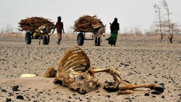 İklim değişikliği yüz binlerce kişiyi öldürecek