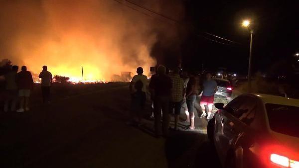 Milas'ta 6 futbol sahası büyüklüğünde alan yandı