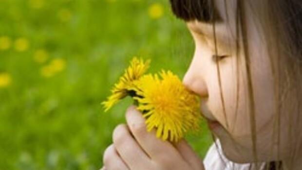 Burun kaşıntısı alerji olabilir