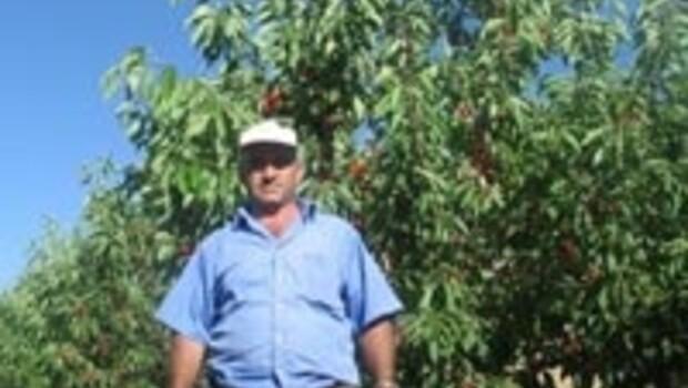 Toroslar'daki kiraz bahçeleri kazandırıyor
