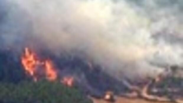 Turkeys biggest-ever forest fire under control in its sixth day