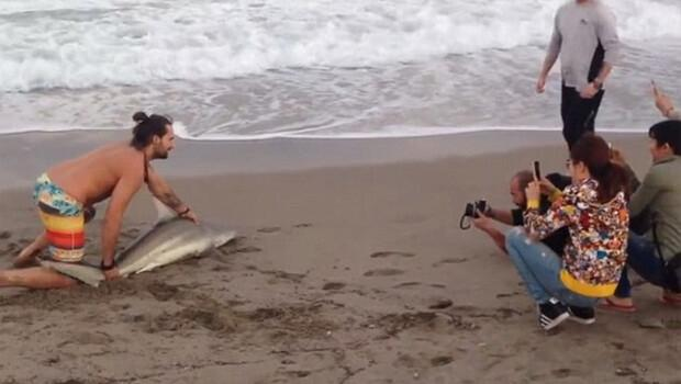Fotoğraf çekmek için köpek balığını denizden çıkardı