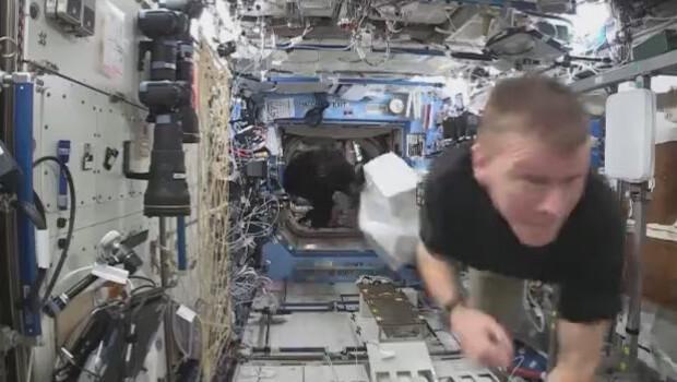 Uluslararası Uzay İstasyonu'nda 'goril' paniği