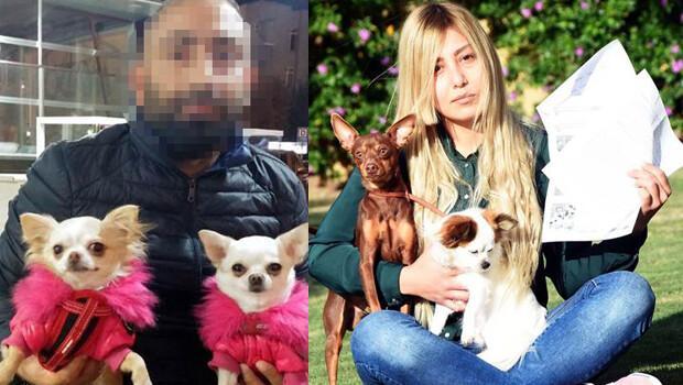 Üniversiteli kız ile köpek yetiştiricisi davalık oldu