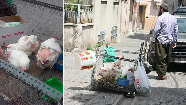 İzmir'e yakışmayan görüntü