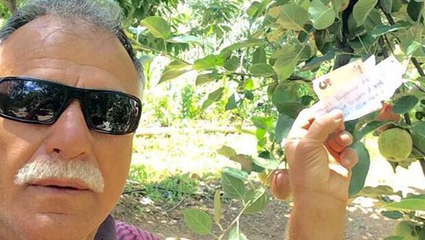 Ağaçtan meyve aldı parasını da ağaca astı