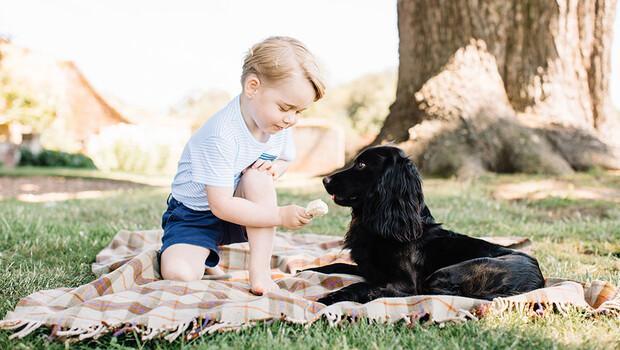 Prens George 3 yaşına girdi
