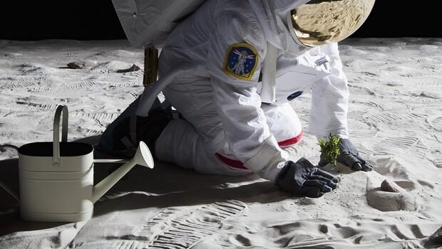 NASA bunu da yaptı